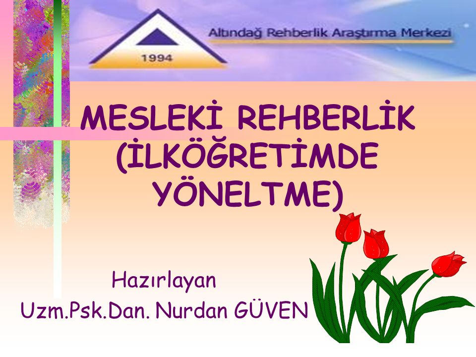 MESLEKİ REHBERLİK (İLKÖĞRETİMDE YÖNELTME)