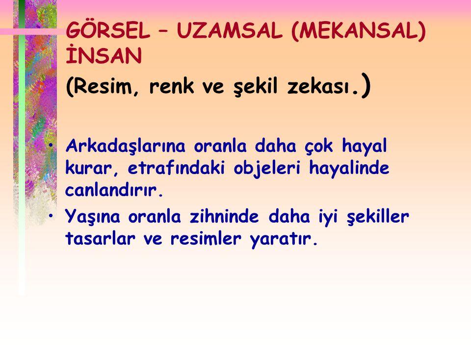 GÖRSEL – UZAMSAL (MEKANSAL) İNSAN (Resim, renk ve şekil zekası.)