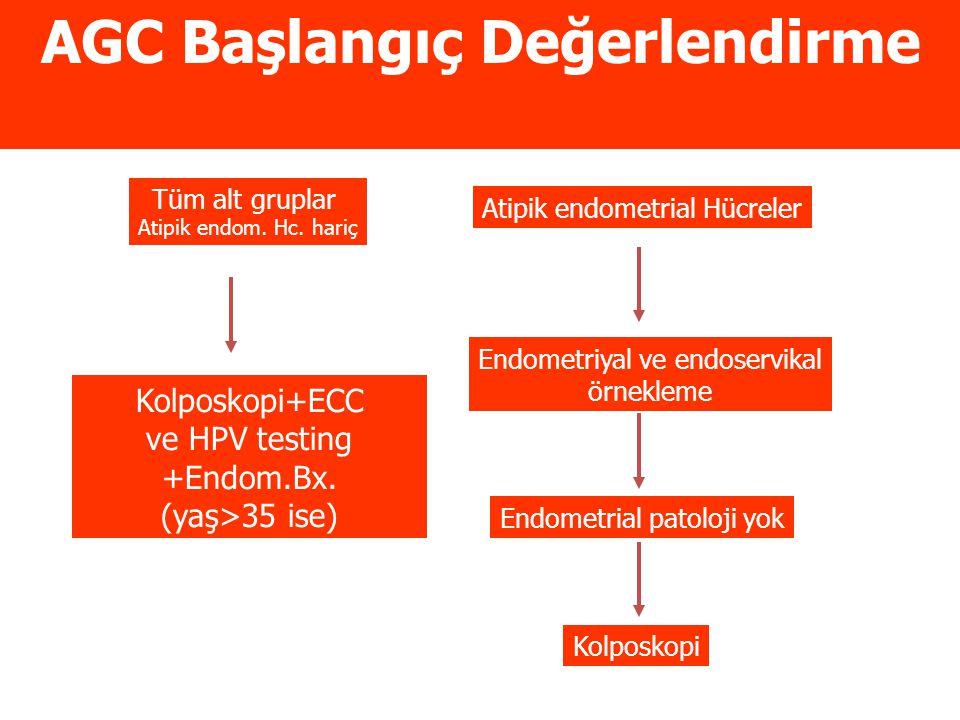 AGC Başlangıç Değerlendirme