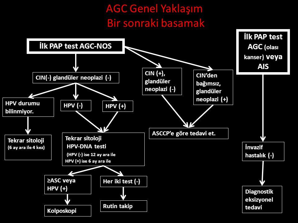 AGC Genel Yaklaşım Bir sonraki basamak