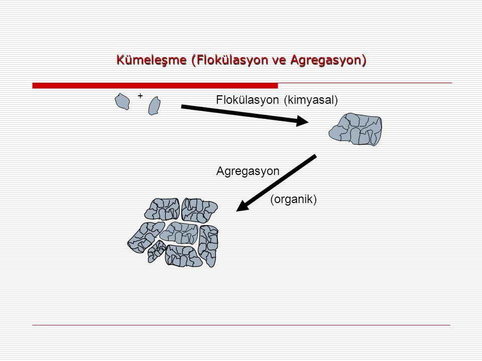 Kümeleşme (Flokülasyon ve Agregasyon)