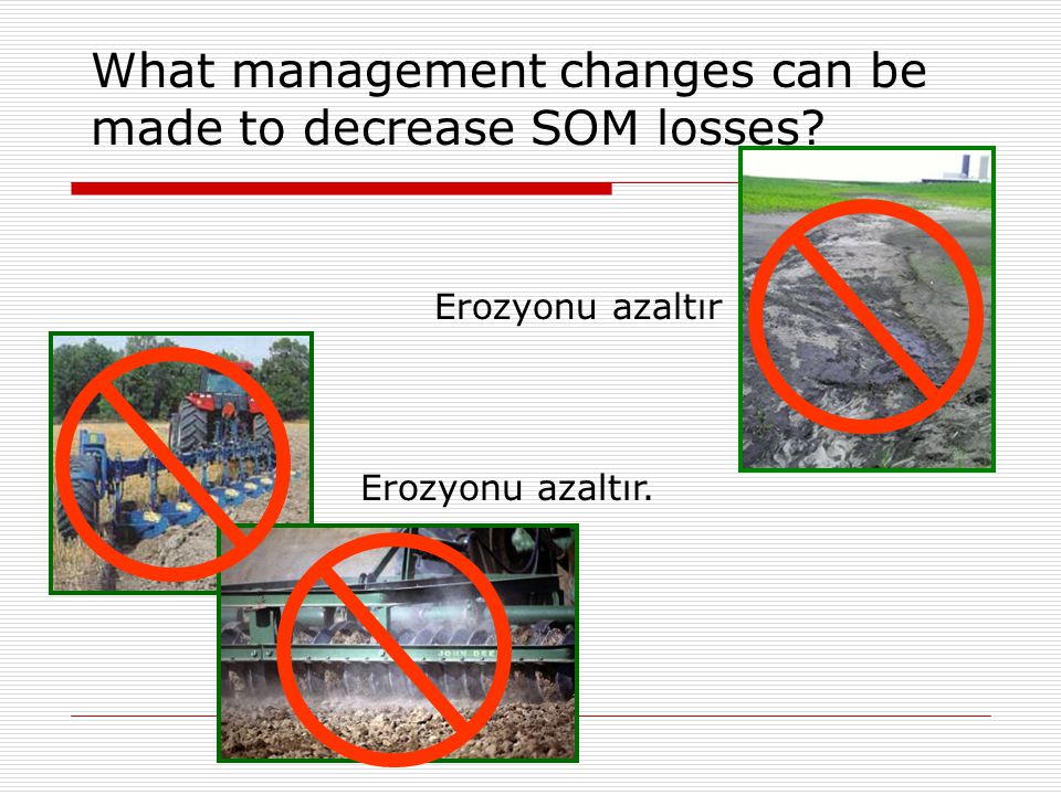What management changes can be made to decrease SOM losses