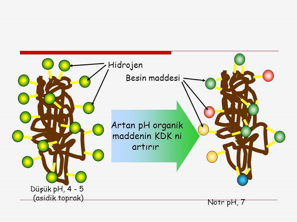 Artan pH organik maddenin KDK ni artırır Hidrojen Besin maddesi
