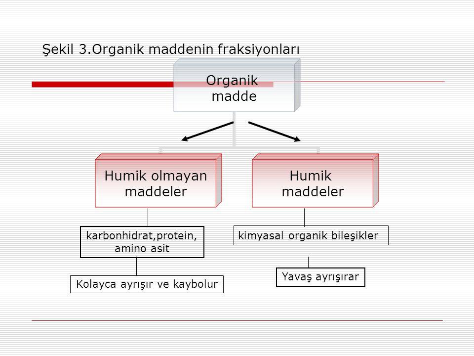Şekil 3.Organik maddenin fraksiyonları
