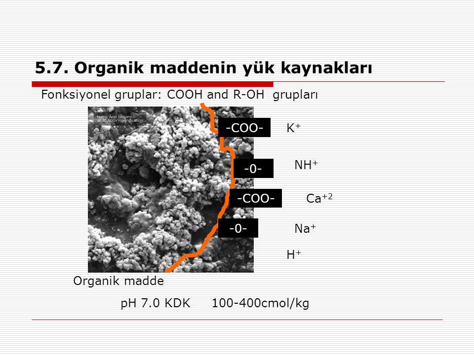 5.7. Organik maddenin yük kaynakları