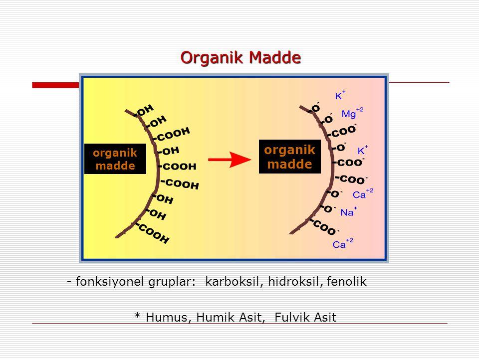 Organik Madde - fonksiyonel gruplar: karboksil, hidroksil, fenolik