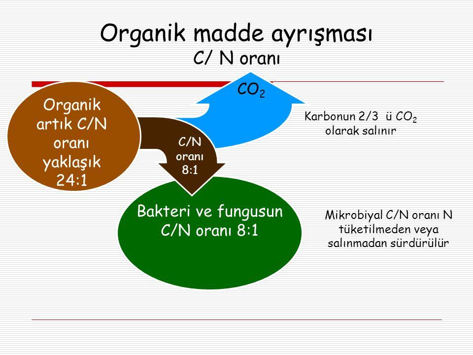 Organik madde ayrışması