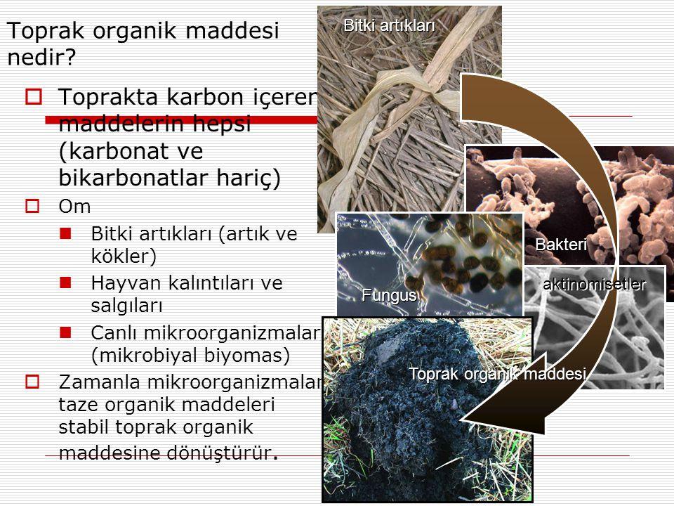 Toprak organik maddesi nedir