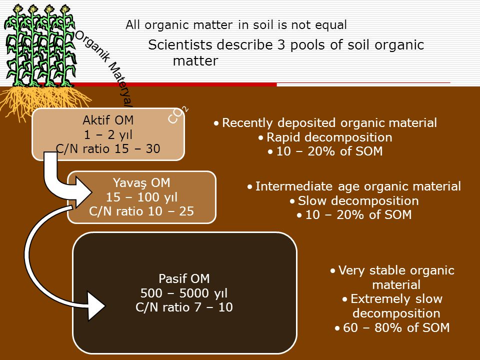All organic matter in soil is not equal
