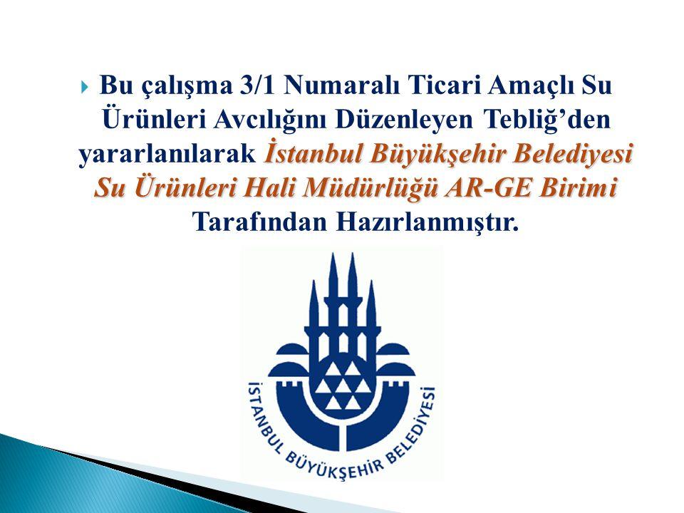 Bu çalışma 3/1 Numaralı Ticari Amaçlı Su Ürünleri Avcılığını Düzenleyen Tebliğ'den yararlanılarak İstanbul Büyükşehir Belediyesi Su Ürünleri Hali Müdürlüğü AR-GE Birimi Tarafından Hazırlanmıştır.