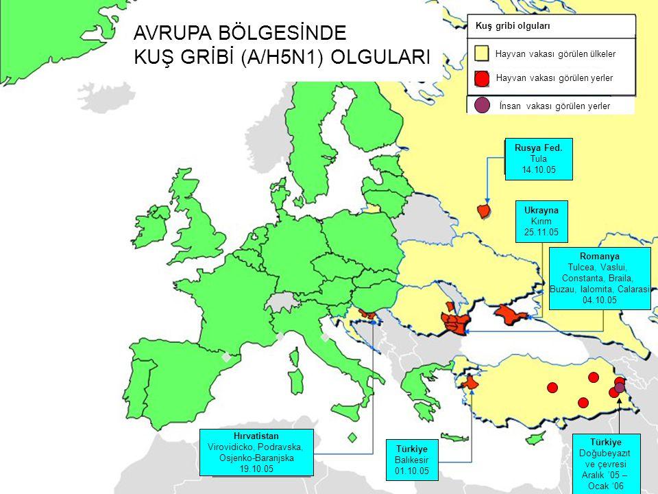 KUŞ GRİBİ (A/H5N1) OLGULARI
