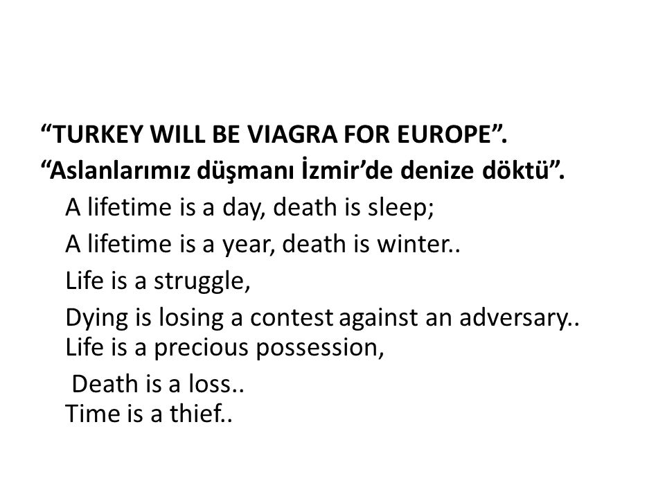 TURKEY WILL BE VIAGRA FOR EUROPE
