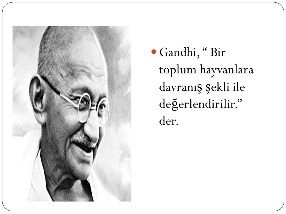 Gandhi, Bir toplum hayvanlara davranış şekli ile değerlendirilir