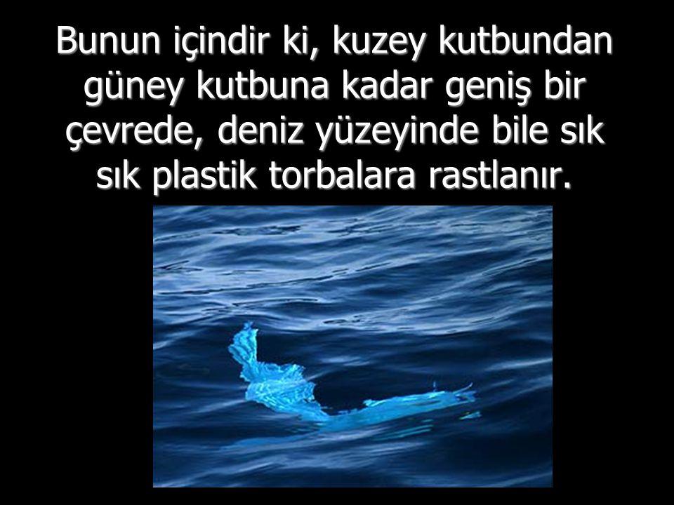 Bunun içindir ki, kuzey kutbundan güney kutbuna kadar geniş bir çevrede, deniz yüzeyinde bile sık sık plastik torbalara rastlanır.