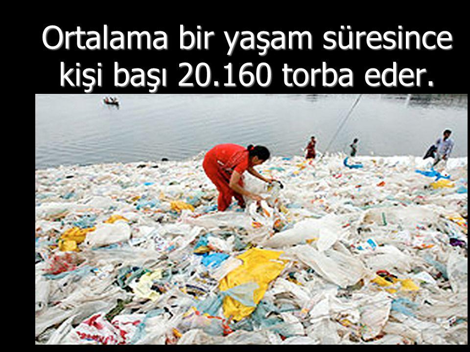 Ortalama bir yaşam süresince kişi başı 20.160 torba eder.