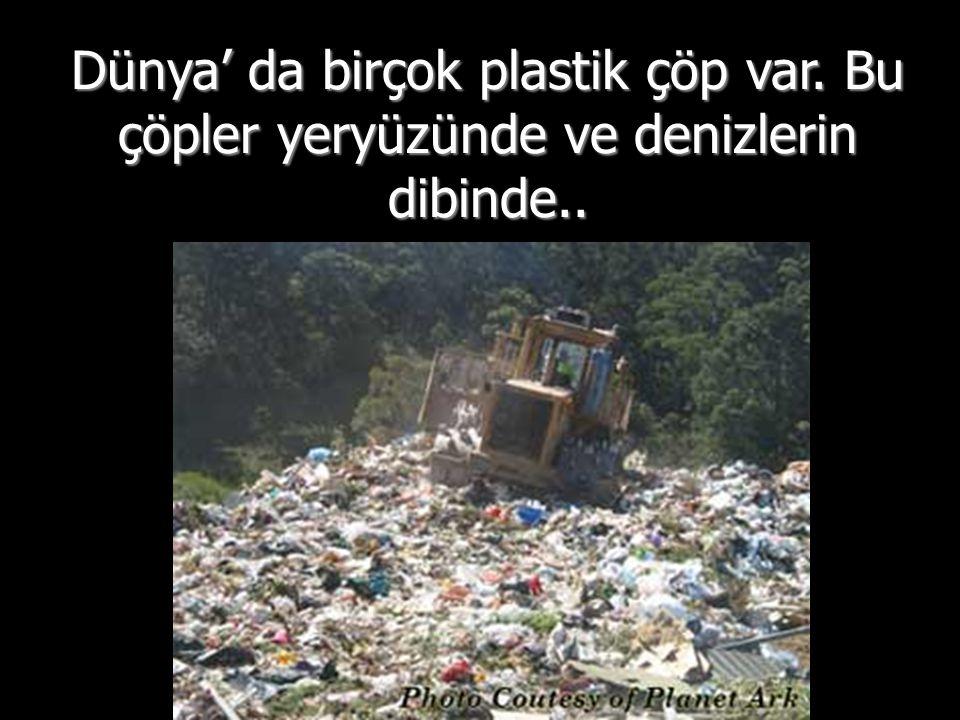 Dünya' da birçok plastik çöp var