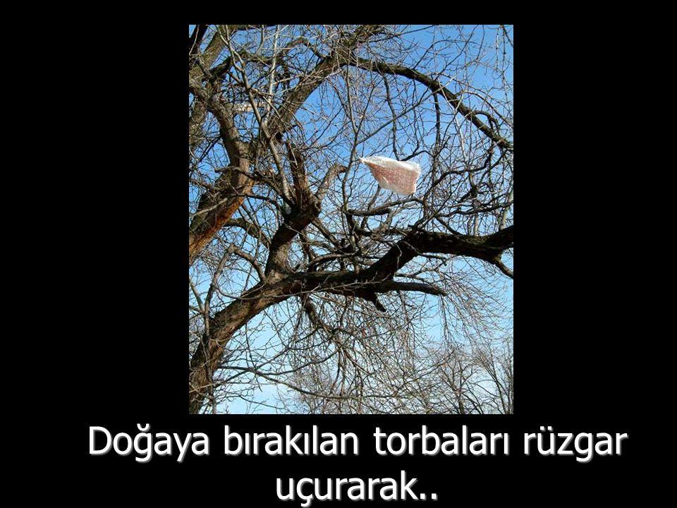 Doğaya bırakılan torbaları rüzgar uçurarak..