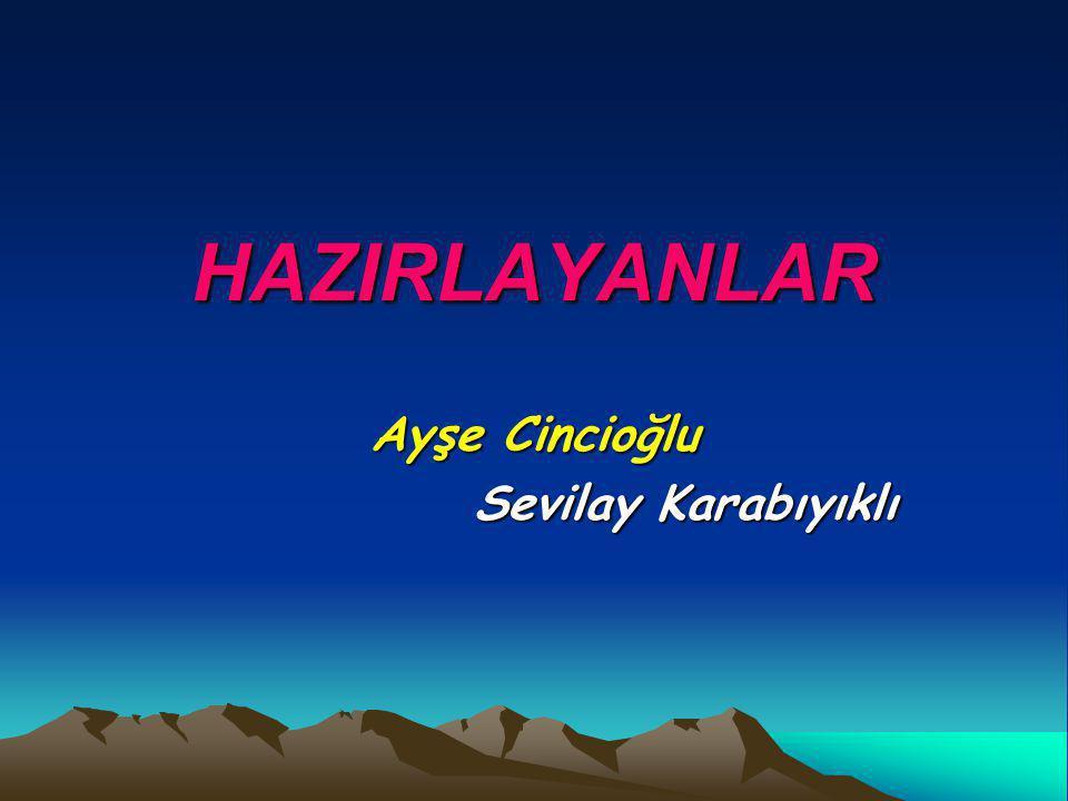 Ayşe Cincioğlu Sevilay Karabıyıklı