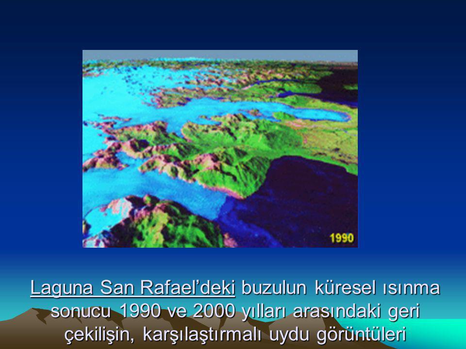 Laguna San Rafael'deki buzulun küresel ısınma sonucu 1990 ve 2000 yılları arasındaki geri çekilişin, karşılaştırmalı uydu görüntüleri