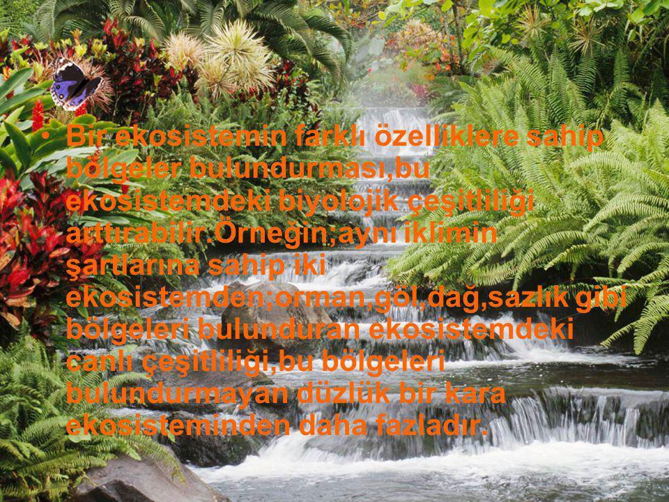 Bir ekosistemin farklı özelliklere sahip bölgeler bulundurması,bu ekosistemdeki biyolojik çeşitliliği arttırabilir.Örneğin;aynı iklimin şartlarına sahip iki ekosistemden;orman,göl,dağ,sazlık gibi bölgeleri bulunduran ekosistemdeki canlı çeşitliliği,bu bölgeleri bulundurmayan düzlük bir kara ekosisteminden daha fazladır.