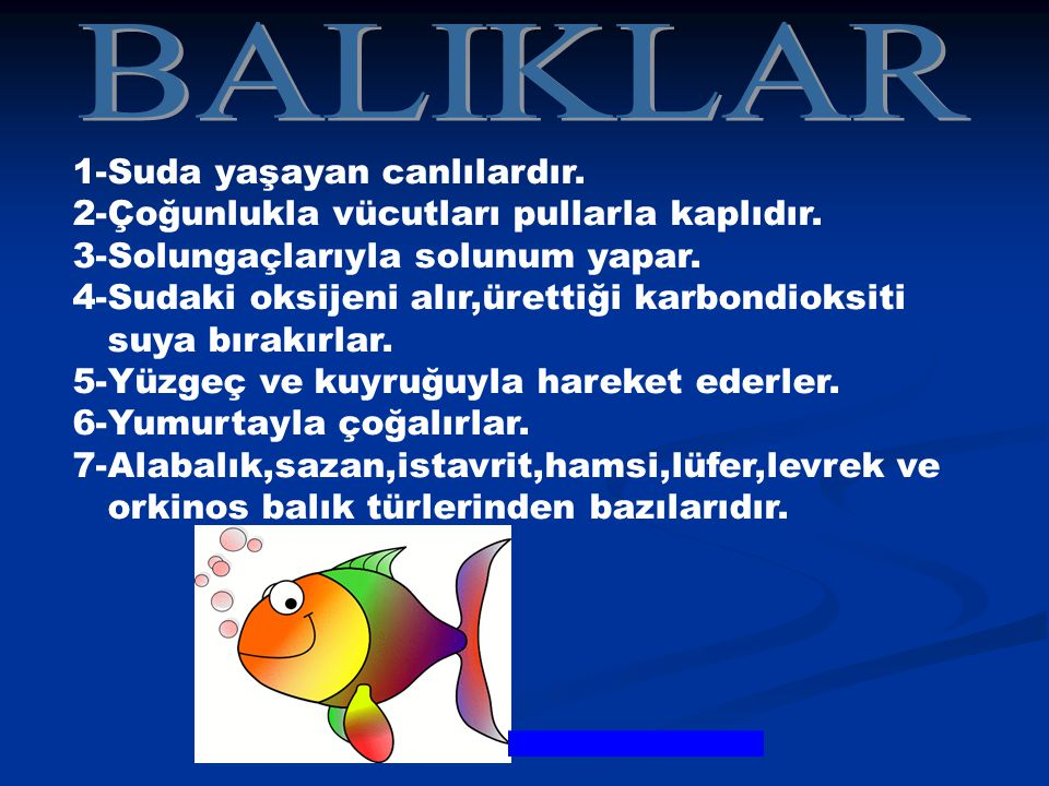 BALIKLAR 1-Suda yaşayan canlılardır.