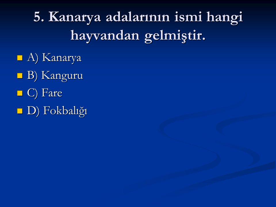 5. Kanarya adalarının ismi hangi hayvandan gelmiştir.