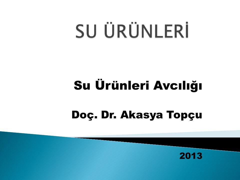 Su Ürünleri Avcılığı Doç. Dr. Akasya Topçu 2013