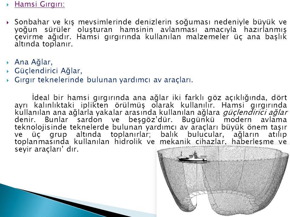 Hamsi Gırgırı: