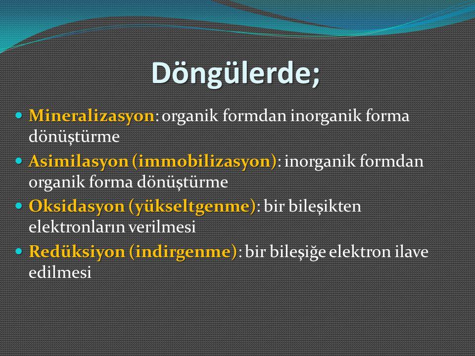 Döngülerde; Mineralizasyon: organik formdan inorganik forma dönüştürme