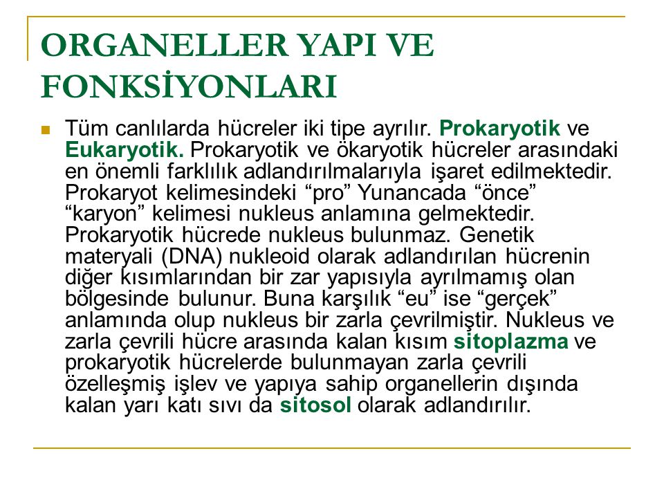 ORGANELLER YAPI VE FONKSİYONLARI