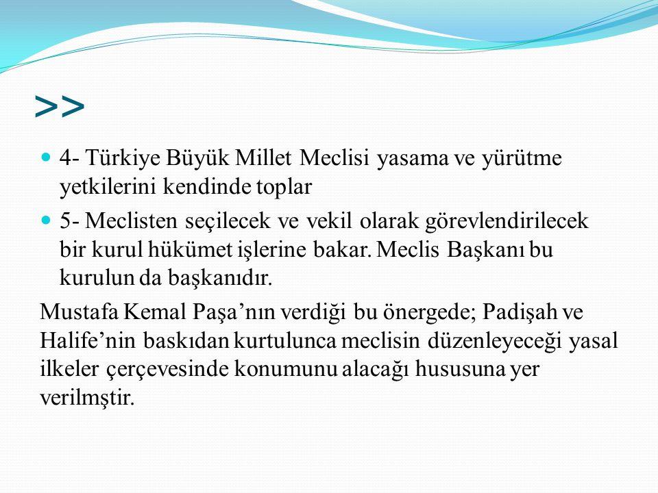 >> 4- Türkiye Büyük Millet Meclisi yasama ve yürütme yetkilerini kendinde toplar.