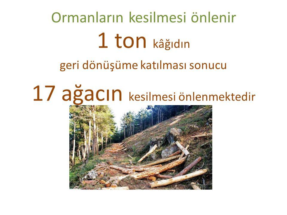 Ormanların kesilmesi önlenir