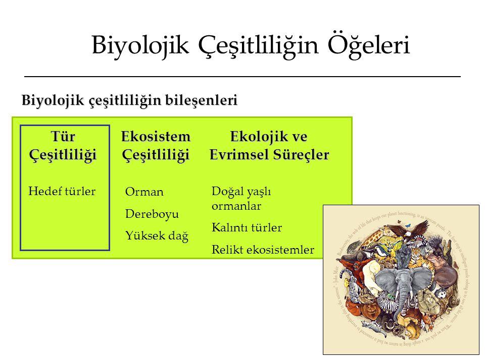 Biyolojik Çeşitliliğin Öğeleri