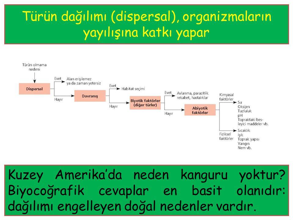 Türün dağılımı (dispersal), organizmaların yayılışına katkı yapar