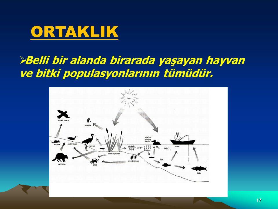 ORTAKLIK Belli bir alanda birarada yaşayan hayvan ve bitki populasyonlarının tümüdür.