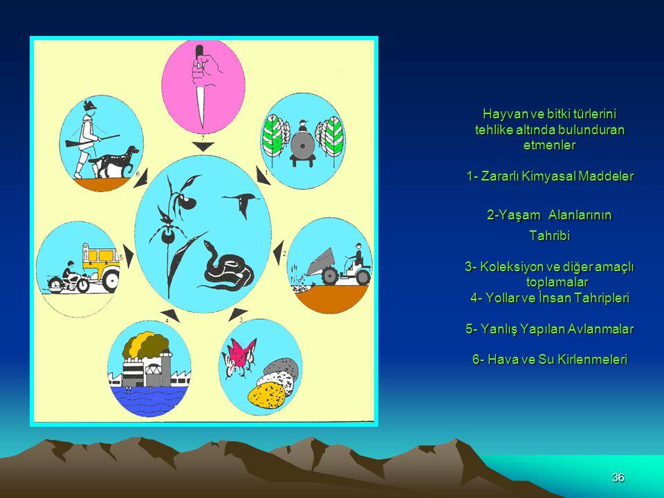 Hayvan ve bitki türlerini tehlike altında bulunduran etmenler 1- Zararlı Kimyasal Maddeler 2-Yaşam Alanlarının Tahribi 3- Koleksiyon ve diğer amaçlı toplamalar 4- Yollar ve İnsan Tahripleri 5- Yanlış Yapılan Avlanmalar 6- Hava ve Su Kirlenmeleri