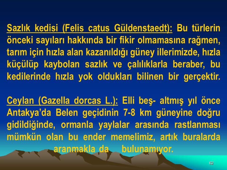 Sazlık kedisi (Felis catus Güldenstaedt): Bu türlerin önceki sayıları hakkında bir fikir olmamasına rağmen, tarım için hızla alan kazanıldığı güney illerimizde, hızla küçülüp kaybolan sazlık ve çalılıklarla beraber, bu kedilerinde hızla yok oldukları bilinen bir gerçektir.