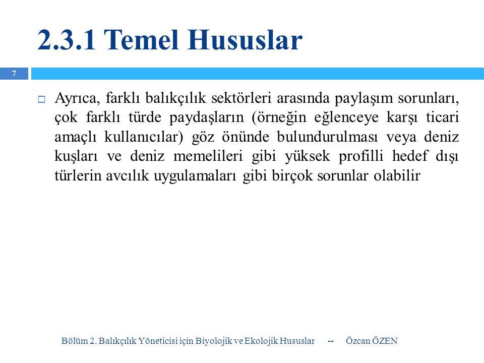 2.3.1 Temel Hususlar