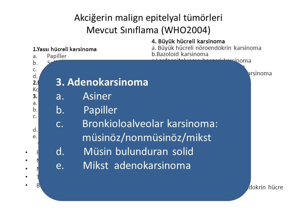 Akciğerin malign epitelyal tümörleri Mevcut Sınıflama (WHO2004)
