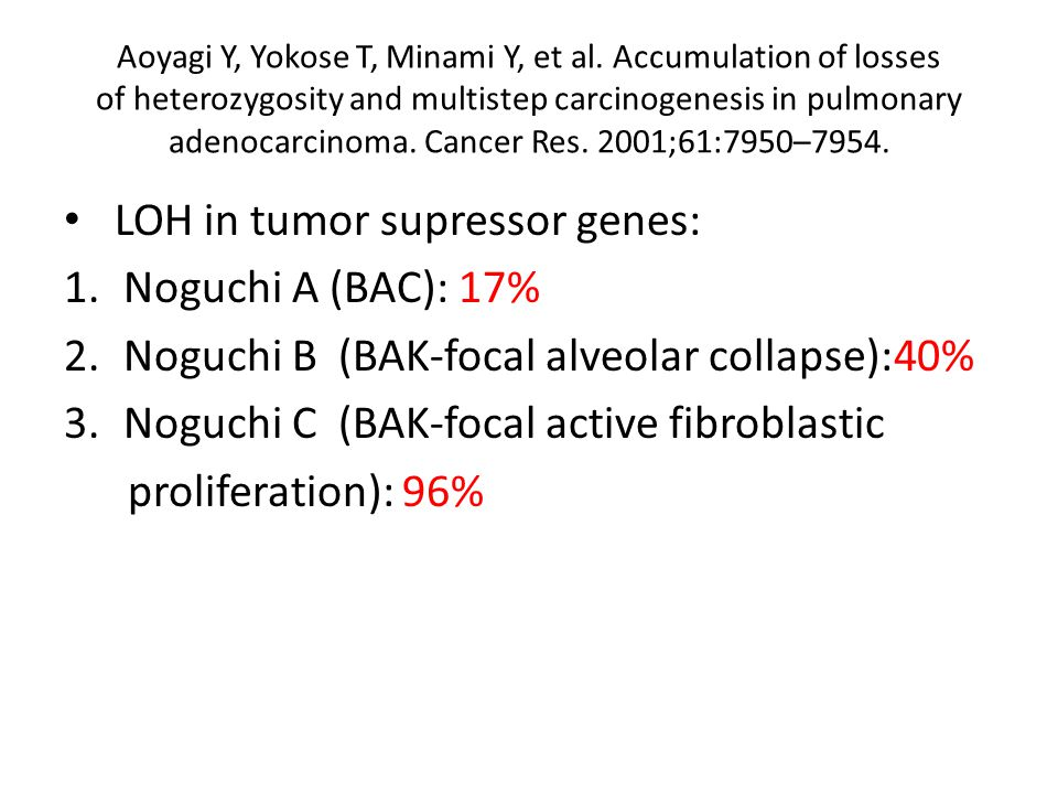 LOH in tumor supressor genes: Noguchi A (BAC): 17%