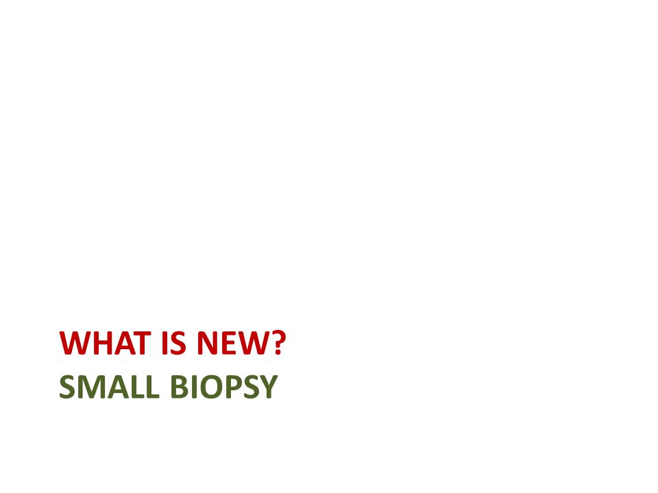 WHAT IS NEW SMALL BIOPSY