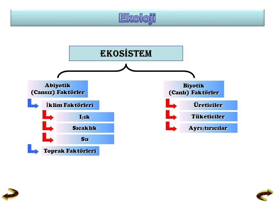 Ekoloji EKOSİSTEM Abiyotik (Cansız) Faktörler Biyotik