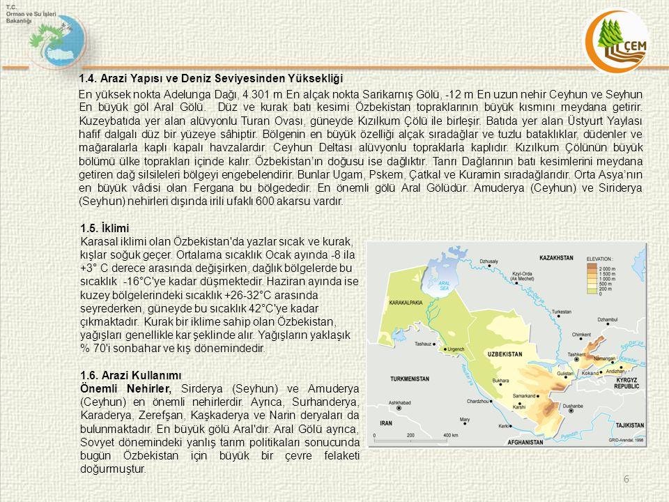 1.4. Arazi Yapısı ve Deniz Seviyesinden Yüksekliği