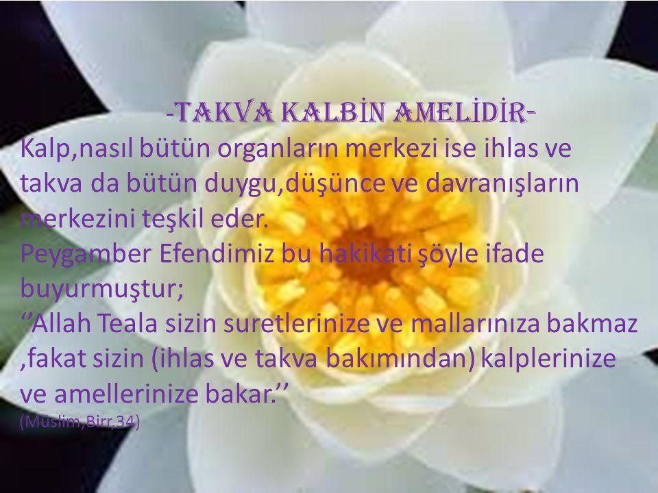 -TAKVA KALBİN AMELİDİR-