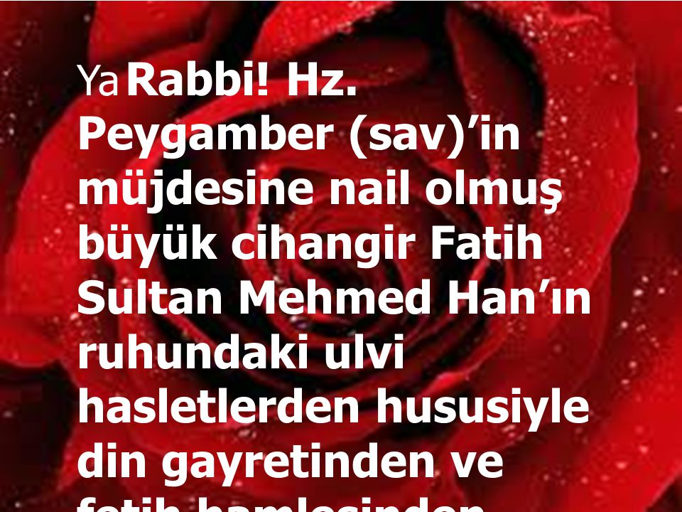 Ya Rabbi. Hz.