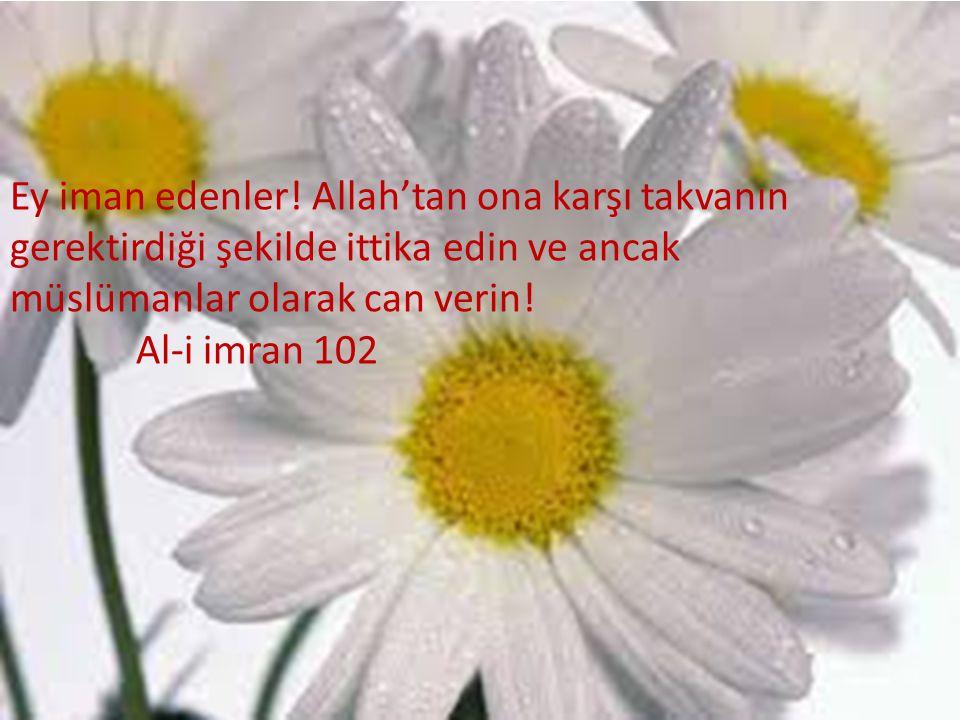 Ey iman edenler! Allah'tan ona karşı takvanın gerektirdiği şekilde ittika edin ve ancak müslümanlar olarak can verin!