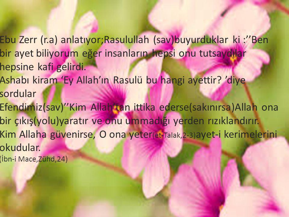 Ashabı kiram 'Ey Allah'ın Rasulü bu hangi ayettir 'diye sordular