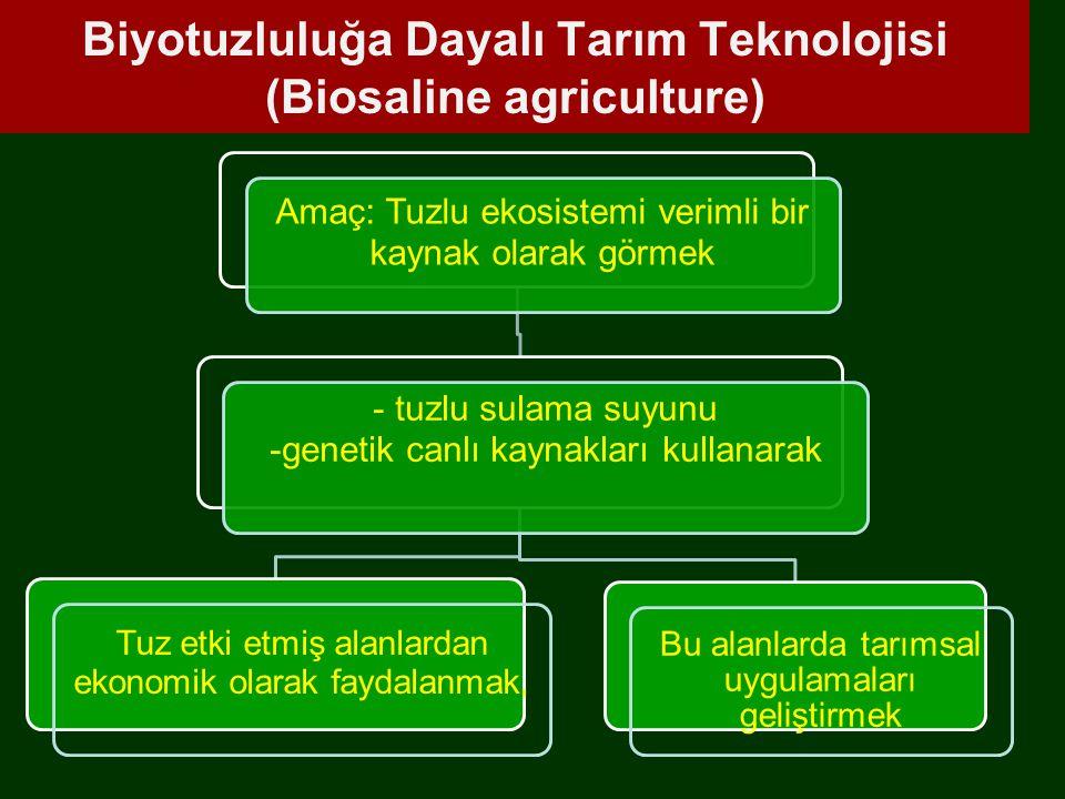 Biyotuzluluğa Dayalı Tarım Teknolojisi (Biosaline agriculture)