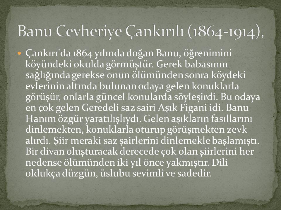 Banu Cevheriye Çankırılı (1864-1914),