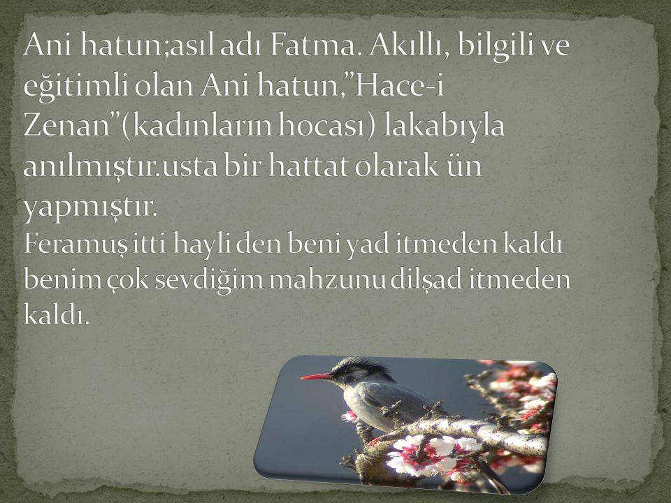 Ani hatun;asıl adı Fatma